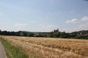 030 Feld neben Radweg