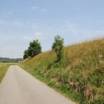 031 Teerstrasse Radweg