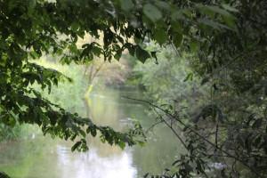038 Donauverlauf Altheim