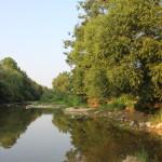 050 Donau ufer