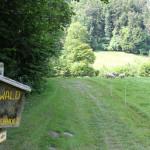 Bannwald Schmalegger Tobel