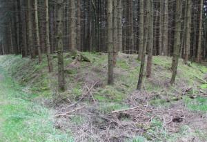 Ecke der Viereckschanze Tannheim