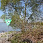Ruhezone Naturschutzgebiet Eriskircher Ried