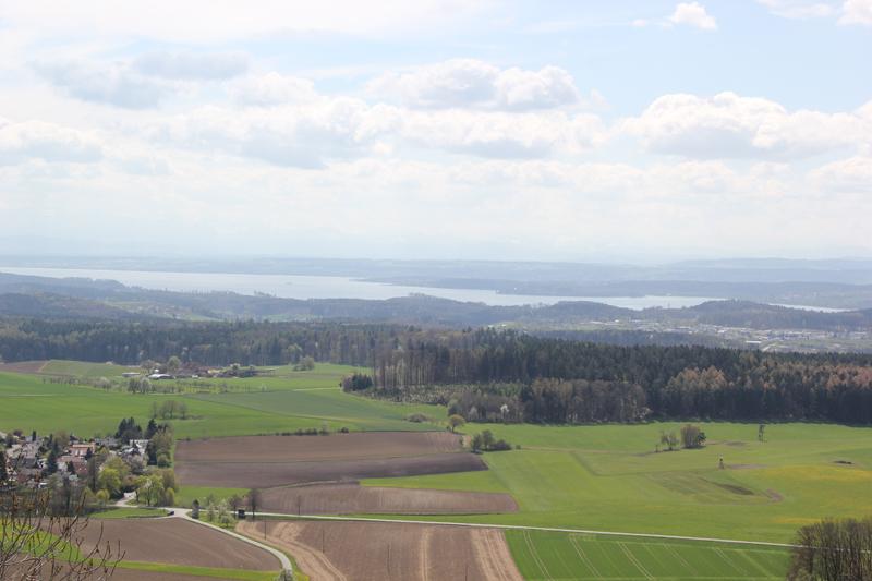 Sicht auf Bodensee vom Hohenbodman