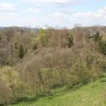 Sicht vom Hohenbodman Richtung Ludwigshafen