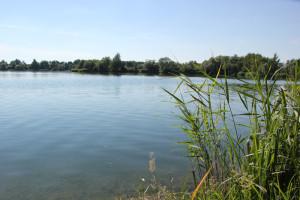 Wassersportsee Schwarzachtalsee