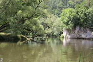 13 Padelboot und Badestelle Donau