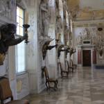 83 Barocker Kaisersaal Einrichtung