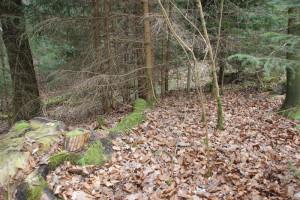 Boeschung Sulpacher Viereckschanze westlich