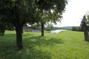 Burgstall Steegen