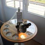 Mikroskop