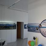 Naturschutzzentrum Eriskirch Empfang