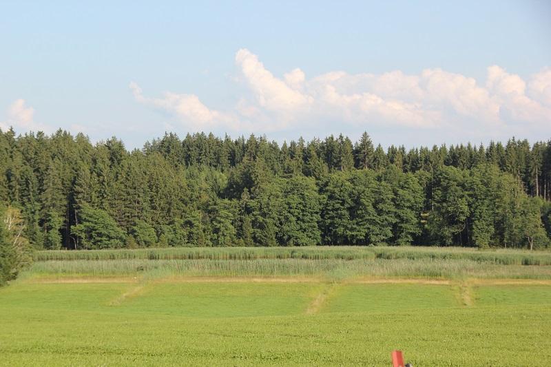 Roterweiher Bremberg