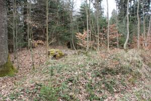 Westliche Viereckschanze Wall Sulpacher Wald