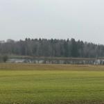 Blick auf Koenigseggsee