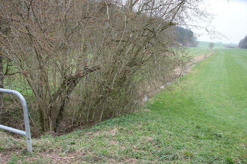 Soppenbach Verlauf