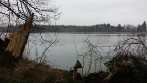 Ufer Koenigseggsee