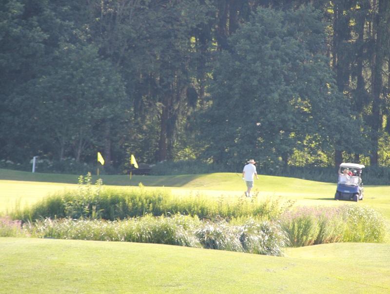 Golfcart Bad Saulgau