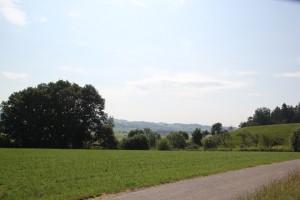 05 Blick Auhof