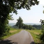 16 Waldgrenze Lattener Steige Hoechsten