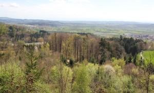 Blick auf Linzgau Burg Frickingen