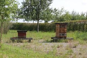 Haus 16 Bienen