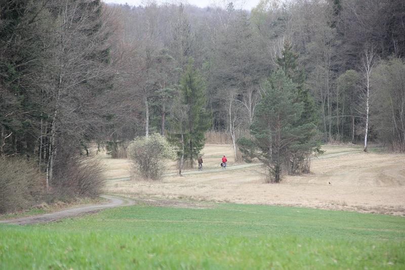Vorsee-Wegeried