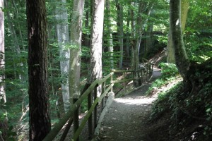 Wanderwege bei Zussdorf