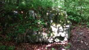 Mauerreste Burgruine Biegenburg