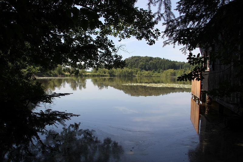 Buchsee Blitzenreuter Seenplatte