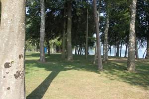 Baueme Strandbad Klausenhorn