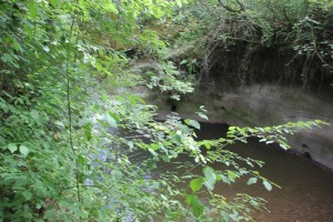 Hoehlen beim Felsbaedle Mochenwangen
