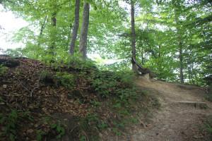 Steiler Weg zur Ringburg Adelmuehle