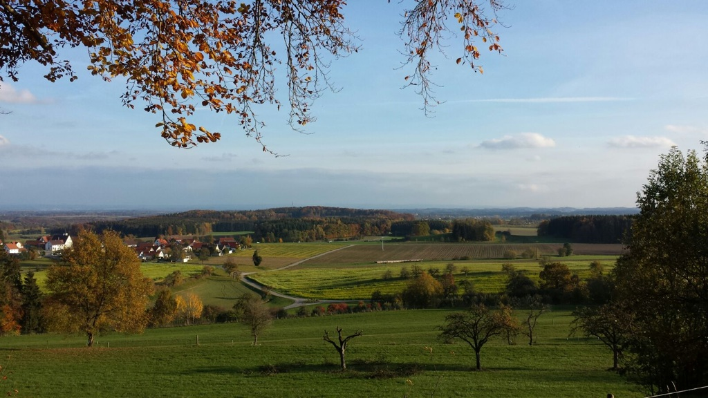 Ausblick vom Ausblickspunkt Bomser Hoehe