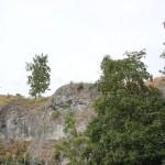 Felswand Loewenfelsen Blaustein-Ehrenstein