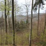 Ausblick Heiligenberg