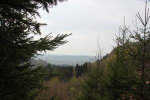 Ausblick Mulde Heiligenberg Wald