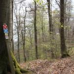 Markierungen Wanderwege Oberschwaben