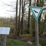 Naturschutzgebiet Heiligenberger Wald