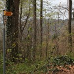 Wanderschild Heiligenberg Wald