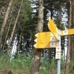 Wegweiser Heiligenberg Wald