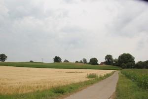 Blick von Westen auf Burgstall Hahnennest