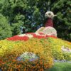 Taubenfigur aus Blumen Insel Mainau