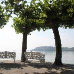 Ufer Sitzbaenke Insel Mainau