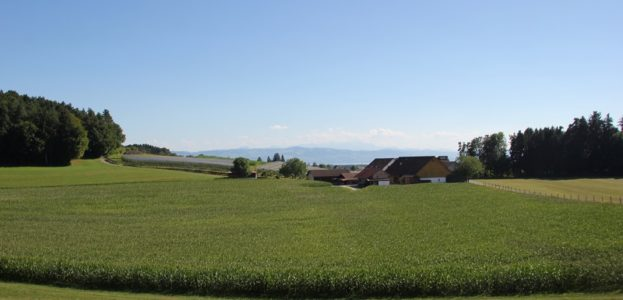 blick-auf-alpen-betznau-kressbronn