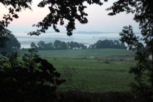 Nebel im Allgaeu Kisslegg