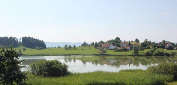 Kreuzweiher Neukirch