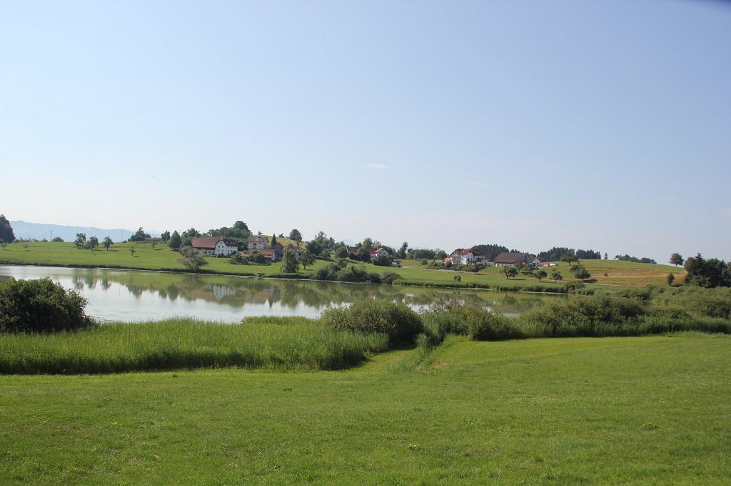 Weg zum Ufer Kreuzweiher