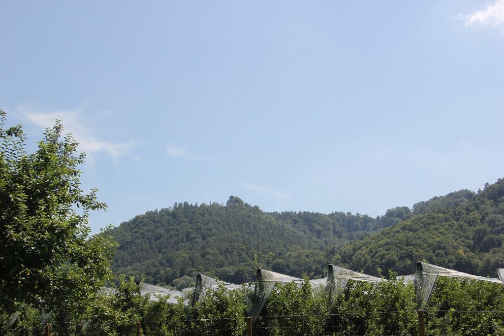 Berg mit Burgruine Altbodman