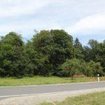 Landstrasse bei Mochenwangen